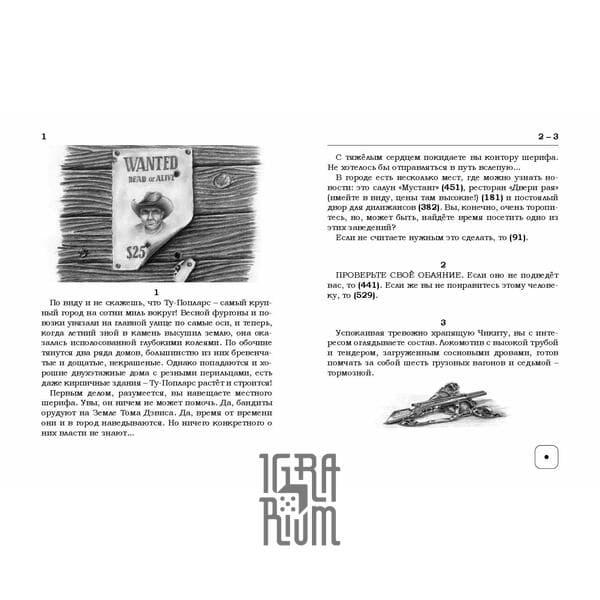 Настольная игра Книга-игра По закону прерии